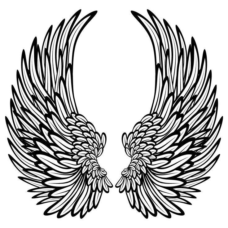 angel wings graphic | Details about Angel Wings With Feathers Wall Stickers / Wall Decals