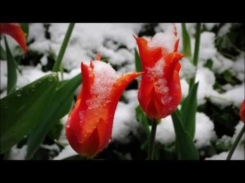 Havas tavasz - 2017 április - YouTube  https://www.youtube.com/watch?v=HTVT0Fiej4o