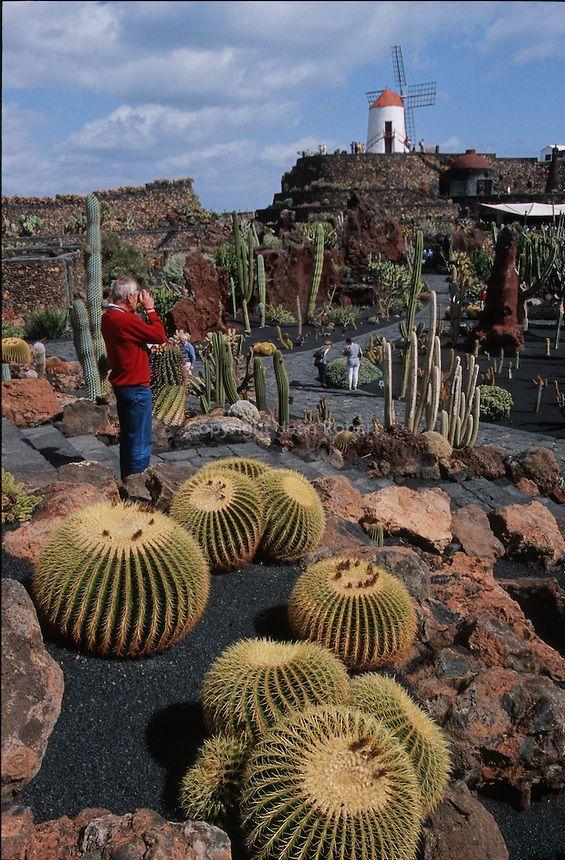 El Jardin de cactus - cactus garden, Lanzarote, Canary Islands, Spain - photo by Cesar Manrique