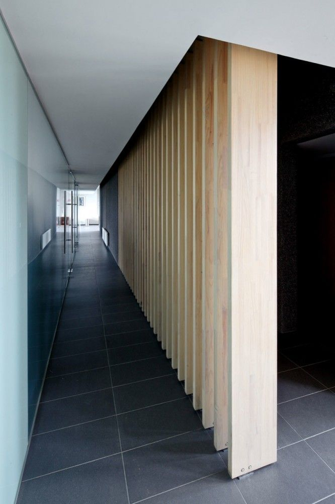 The natural wood feature wall combined with the grey floor, looks amazing!