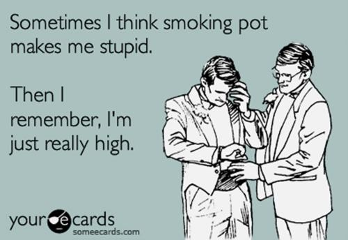 Sometimes I think smoking pot makes me stupid...