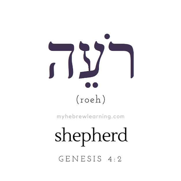 Transliteration Roeh Genesis 4 2 And Abel Was A Shepherd Of Sheep Vai Hebel Hebrew Tattoo Hebrew Quotes Hebrew Words