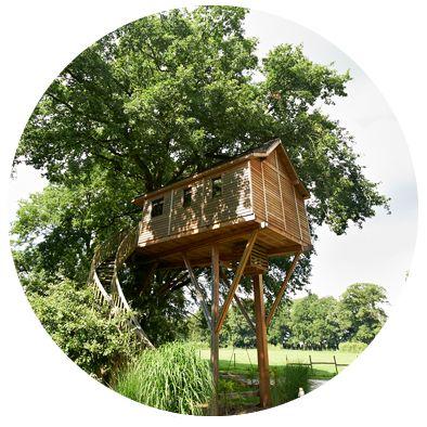 La cabane du grand chêne | Les Cabanes de Marie