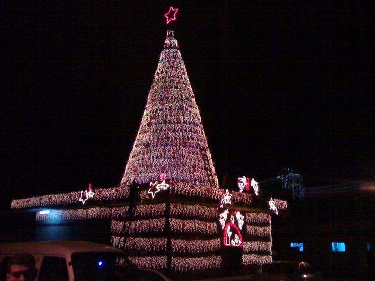 Anaz Christmass tree 2006