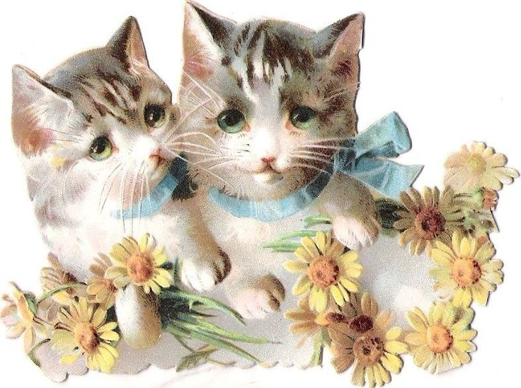 Oblaten Glanzbild scrap die cut chromo Katze cat kitten  Helena Maguire