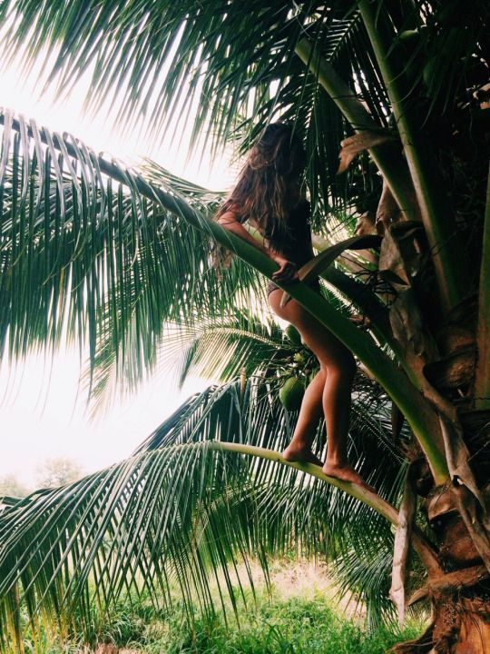 Tropical Island Adventures :: Escape to a Beach Paradise :: Soak in the Sun :: Palms + Ocean Air :: Free your Wild :: See more Untamed Island Inspiration @untamedmama
