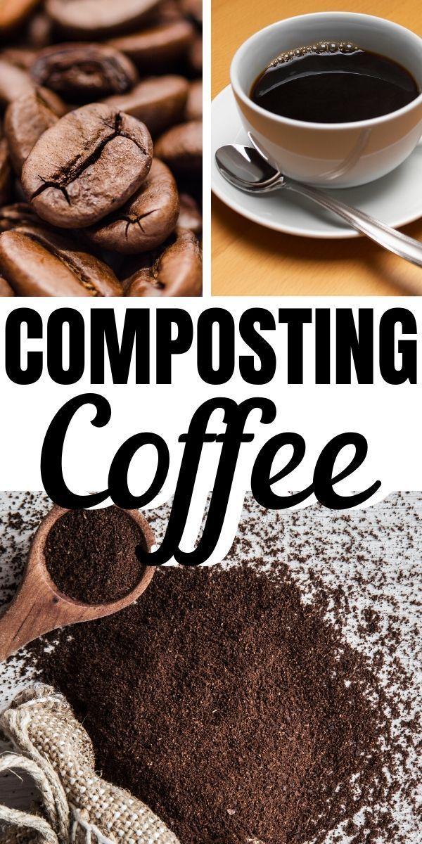9194251402a3190175cb31056d95ab6e - Coffee Grounds Good For Vegetable Gardens