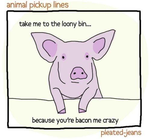 haha! Bacon me crazy