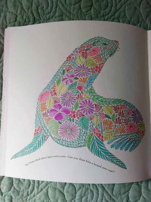 Coral Reef From Millie Marotta39s Animal Kingdom Colouring Book