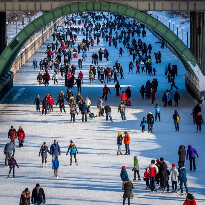 Our Rideau Canal photo contest is still going on until March 4! Your cool pics of the season could WIN you $250. Submit them in the form below.