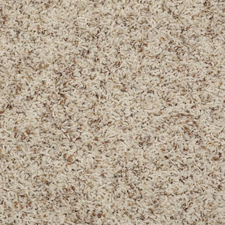 87 Best Images About Shaw Anso Nylon Carpet On Pinterest