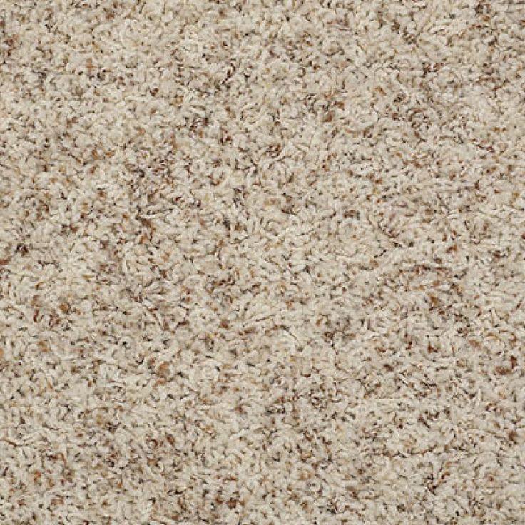 Color 00123 Pebble Q4532 Alamar B Shaw Anso Nylon Carpet Georgia Industries