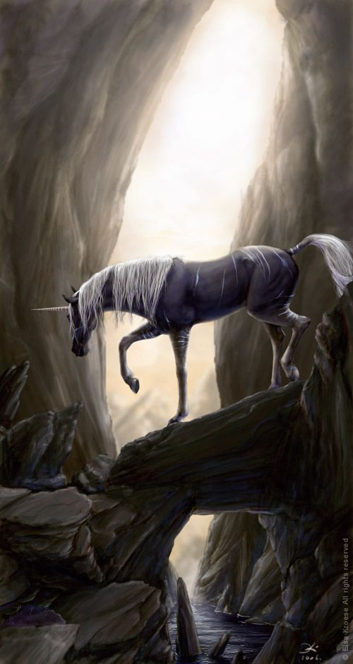 Unicorns are very territorial creatures. They have been known to drive away dragons which wander into there range.