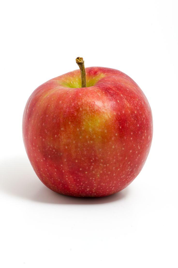 short essay on apple tree in hindi google docs