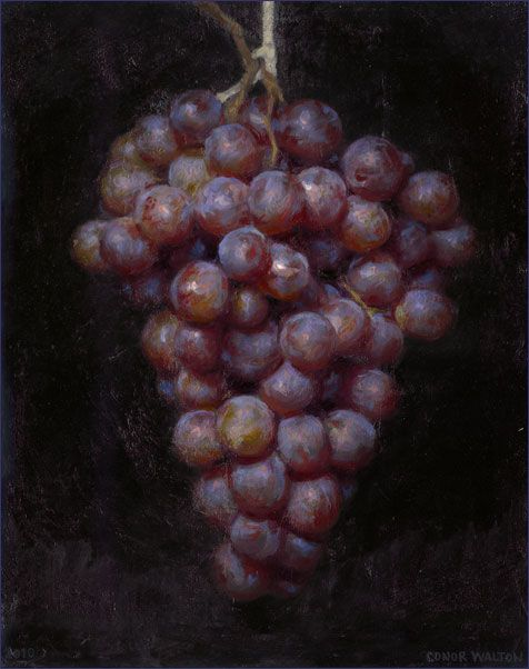 Conor Walton: Purple Grapes, oil on linen, 15x12  2010