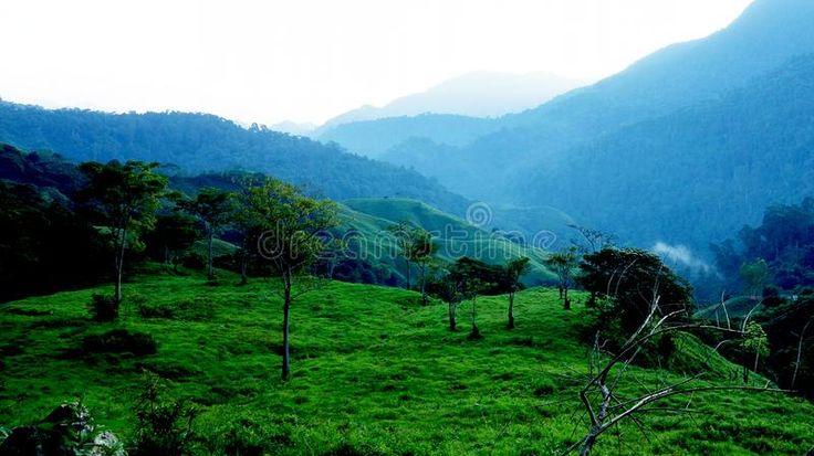Download Morning Rise In Sierra Nevada De Santa Marta, Colombia Stock Image - Image: 107903581