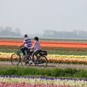 Dutch bike tours - Bike tours Holland self guided- Cycle tours Netherlands