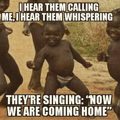 eurovision 2016 memes