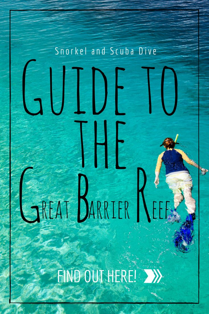 The trip to the Great Barrier Reef you have to take before it's gone for good.