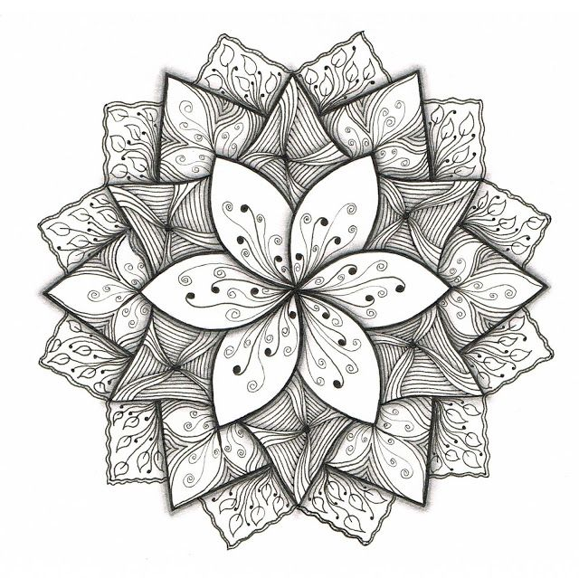 526 best Zentangle flowers images on Pinterest Mandalas