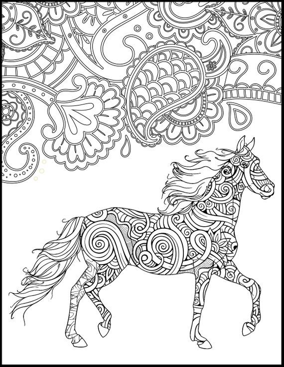 2 Printable Coloring Page for Adults and Kids - Fun ...