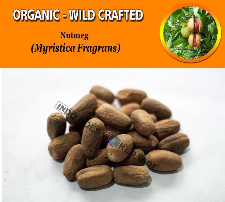 Nutmeg Pala Myristica Fragrans Organic Wild Crafted Herb FREE SHIPPING WORLDWIDE #herb #herbs