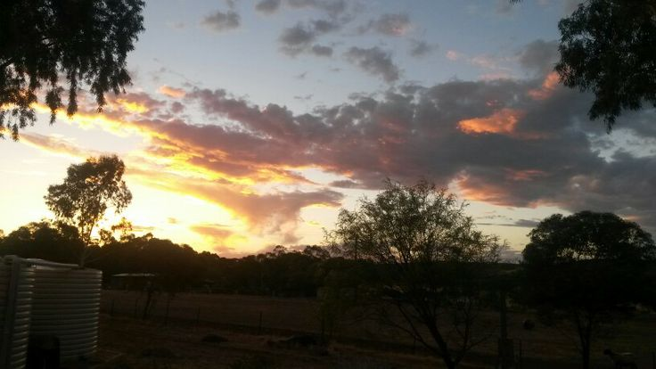 Sunset from our verandah looking west. .