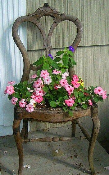 vieilles chaises en jardinières fleuries..