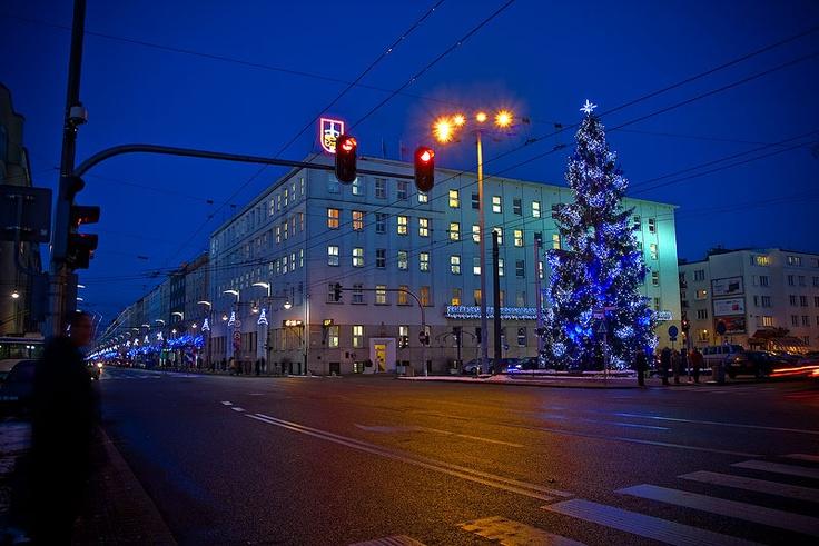 Choinka przy Urzędzie Miasta Gdyni / Christmas Tree by Gdynia City Hall | fot. Marcin Kostrzyński | #christmas #iluminacja #gdynia