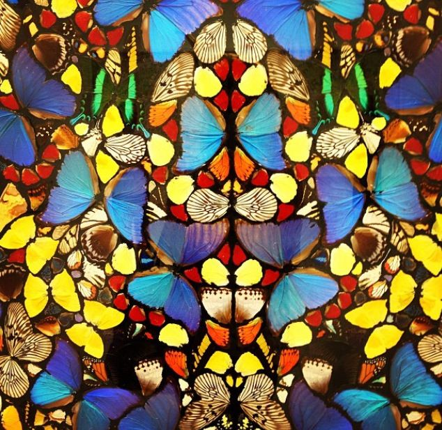 Damien hurst butterfly paintings(details made with real butterflies)