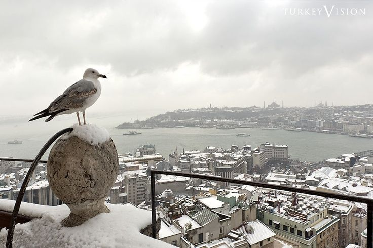 A View of Golden Horn with Snow
