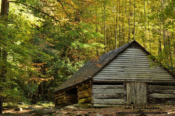 Beautiful fall leaves in the smokies smokies for Nuvola 9 cabin gatlinburg