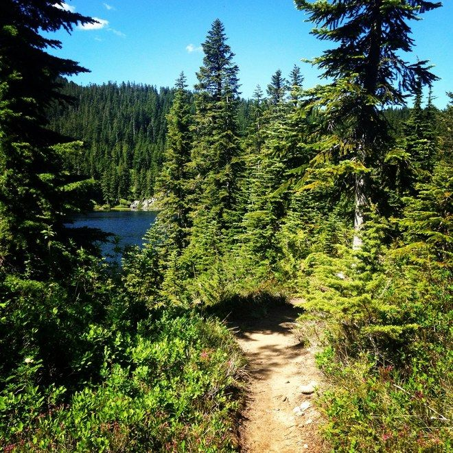 Rainbow Lake peeks through the trees — Snoqualmie Region — 10 miles — 2000ft gain — GOAL HIKE!