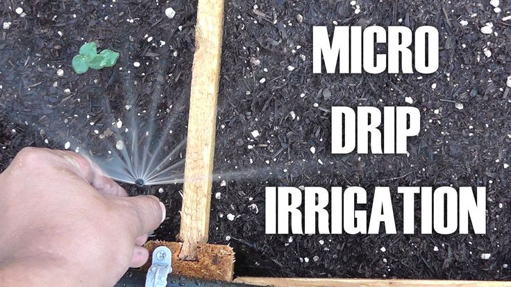 Setting up Micro Sprinklers for Raised Beds - Save Water and use the benefits of drip irrigation!
