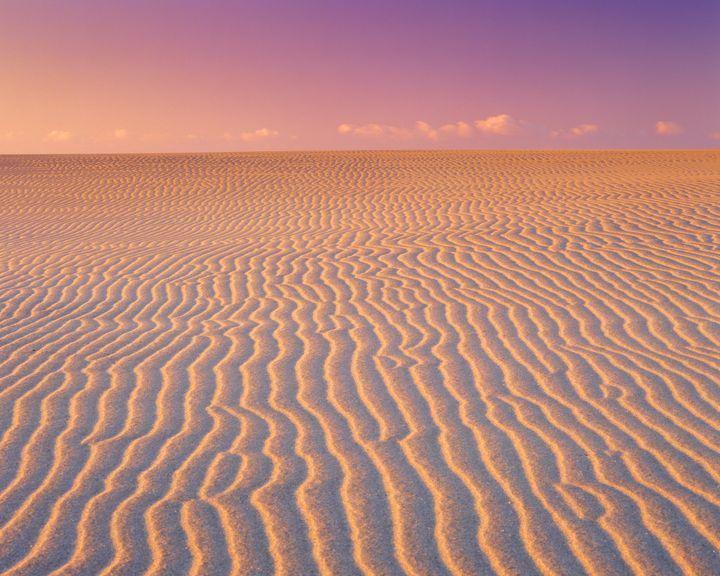 日本の砂丘は鳥取だけじゃない!静岡県の隠れた絶景「中田島砂丘」が美しい
