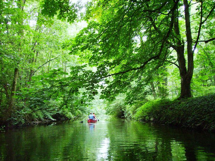 Die Schwentine bei Kiel- Ob mit dem Rad, dem Kanu oder auf Schusters Sohlen: die Umgebung rund um die Schusterstadt Preetz in der Holsteinischen Schweiz ist ideal für abenteuerliche Entdeckungstouren und trotzdem ganz nah an der Stadt Kiel. Der Fluss Schwentine, der sich auf 55 Kilometern von der Rosenstadt Eutin bis in die Landeshauptstadt schlängelt, kann mit dem Kanu befahren werden, wobei der Weg dabei auch durch weite Seen wie den Großen Plöner See führt. Zwischen Preetz und Kiel…