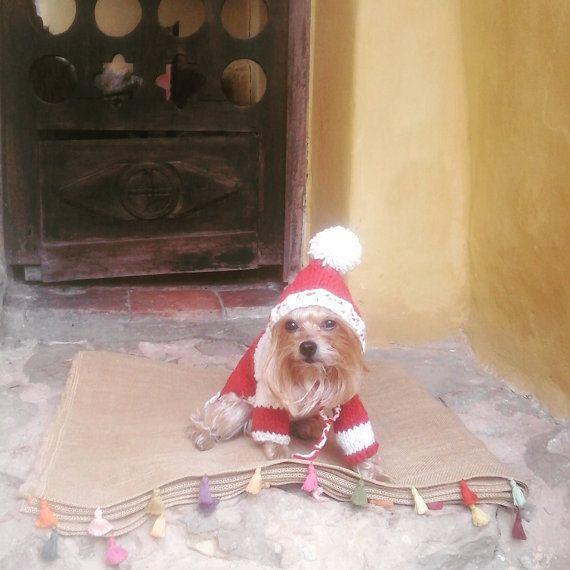 Christmas Dog Sweater / 100% Pure Soft Wool /Hoodie by CasaLunaCo