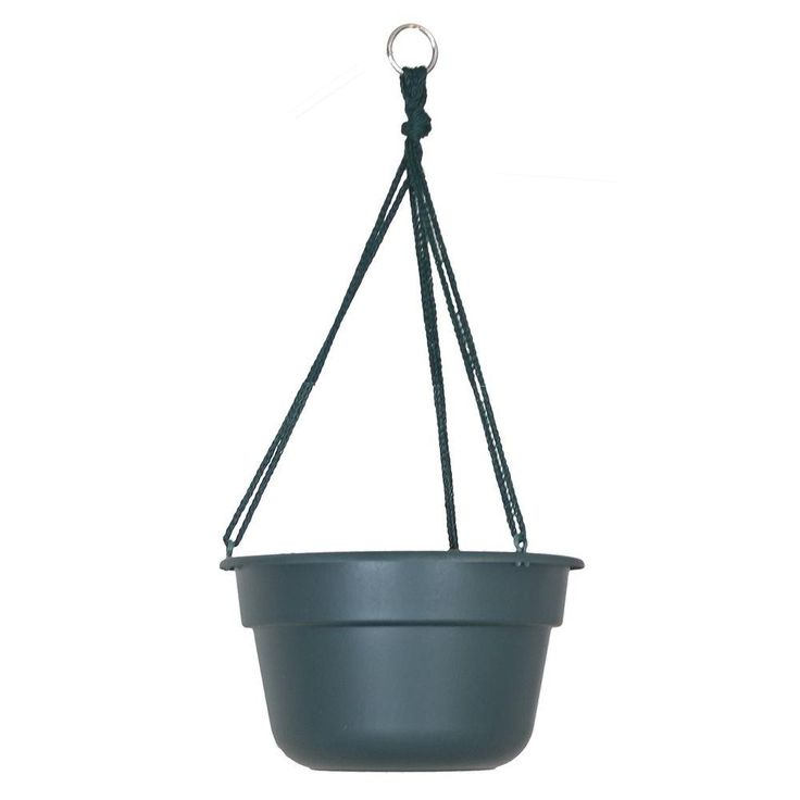 Bloem 12 in. Midsummer Night Dura Cotta Plastic Hanging Basket - DCHB12-52 - The Home Depot