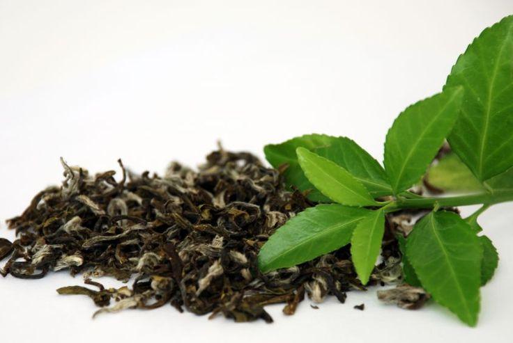 Scoprite con noi tutti i benefici del tè verde per dimagrire, vi presentiamo le proprietà della bevanda.