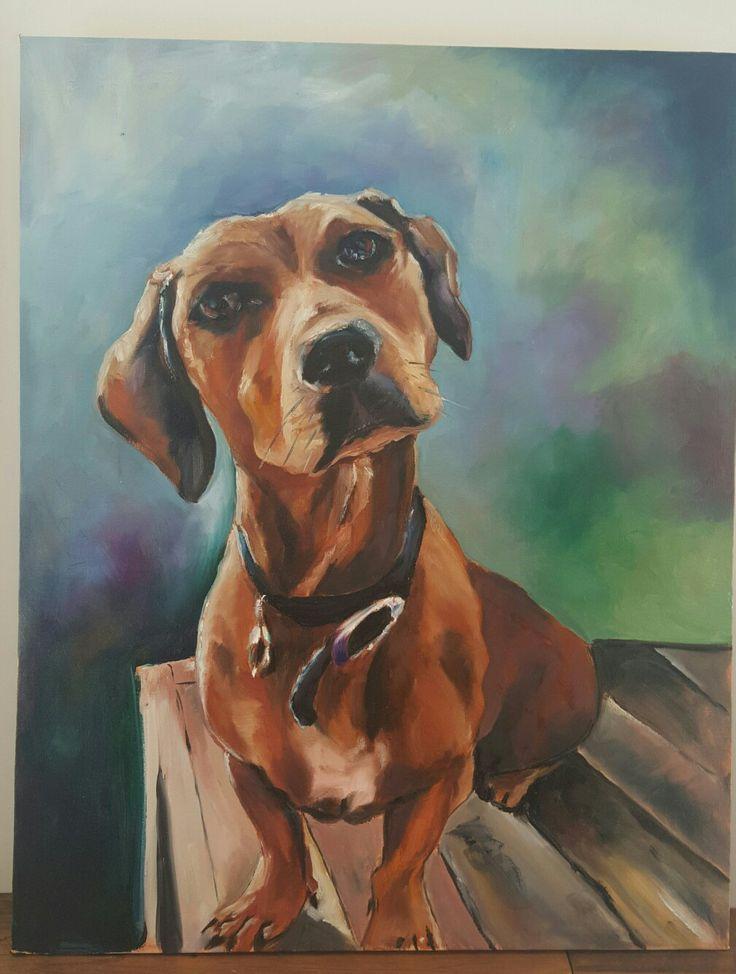 Monty The sausage dog..oil paint