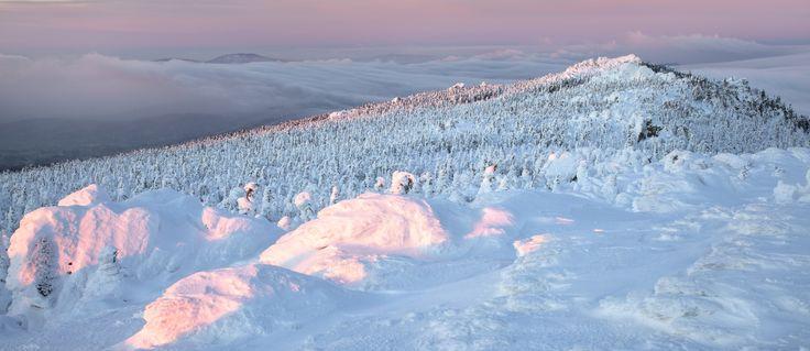 Снежный рай — National Geographic Россия