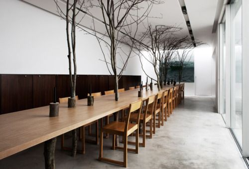 the fantasies of charles / charles kaisinTrees Trunks, Dining Room, Trees Tables, Charles Kaisin, Interiors Design, Beach Tables, Indoor Trees, Brussels, Dining Tables