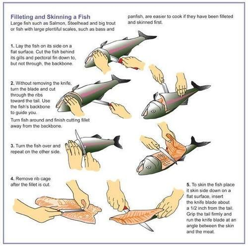 this is a cute link to 48 things every man should know- this graphic of fish cleaning is pretty much how I was taught