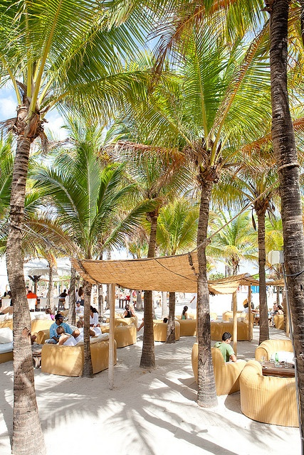 Nikki Beach, Miami Beach >>> After everything going on this week, this place looks really lovely...@}-,-;—