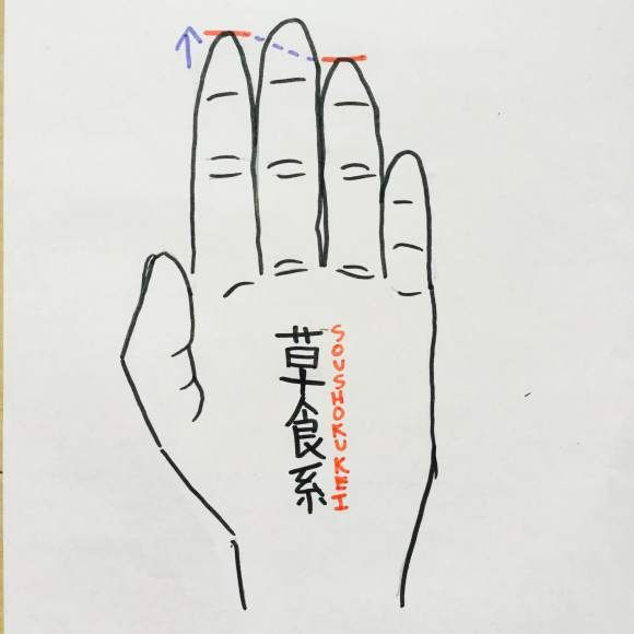 New Japanese trend encourages the use of digit ratio theory to assess your potential partner's personality before you actually commit to the relationship. Based on real science, the trend might have something to it!