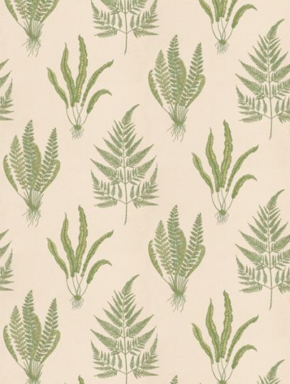Woodland Fern  is taken from Sanderson's A Painter's Garden wallpaper collection.