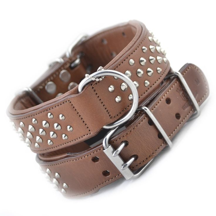 """Luxury Leather Designer Strong Dog Collar the """"Rogue RuffNeck  Dog Collar""""  STRONGDOGZ ROGUE ROYALTY"""