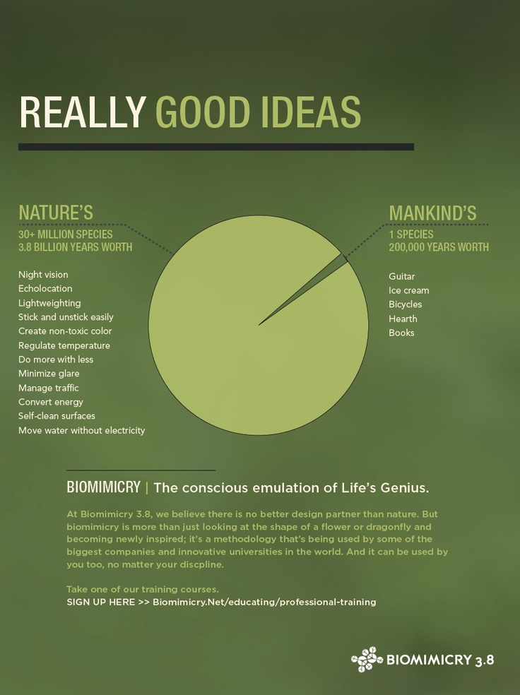 Biomimicry :: Really Good Ideas