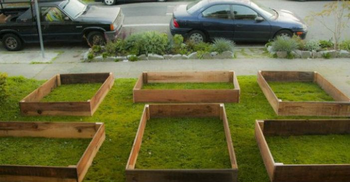 This is What Happens When You Decide To Create Your Own Food Security - Grow Food, Not Lawns