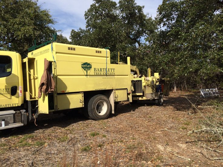 Bartlett Tree Services working at our future wedding ceremony site